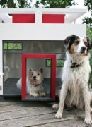 """Best Friend's Home"" offers Luxury Villas for Your Dog"
