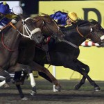 Gloria De Campeao Wins Dubai World Cup – The World's Richest Horse Race