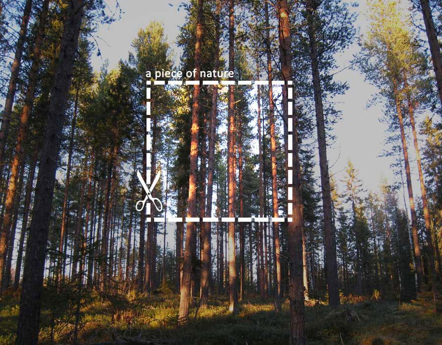 Treehotel_1