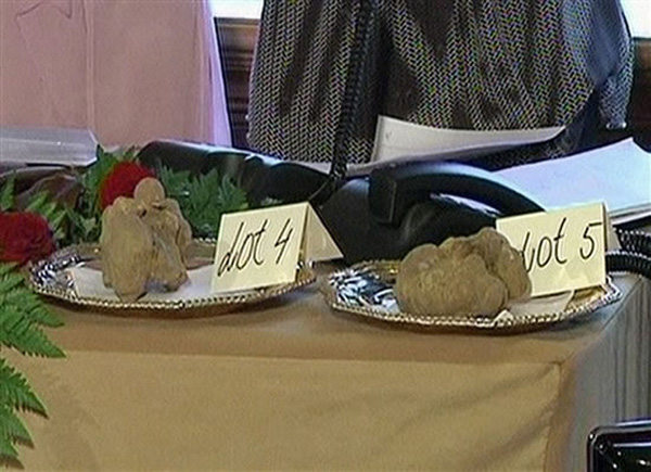 $330,000 pair of white truffles