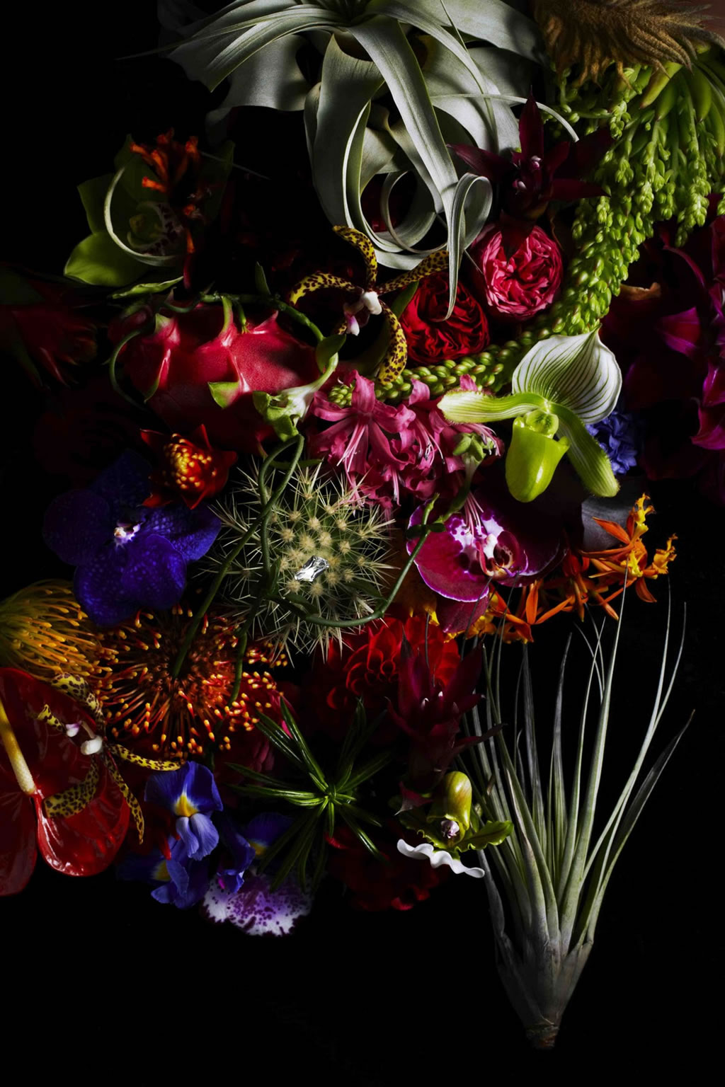 Botanical-masterpieces-with-Swarovski-Elements-1