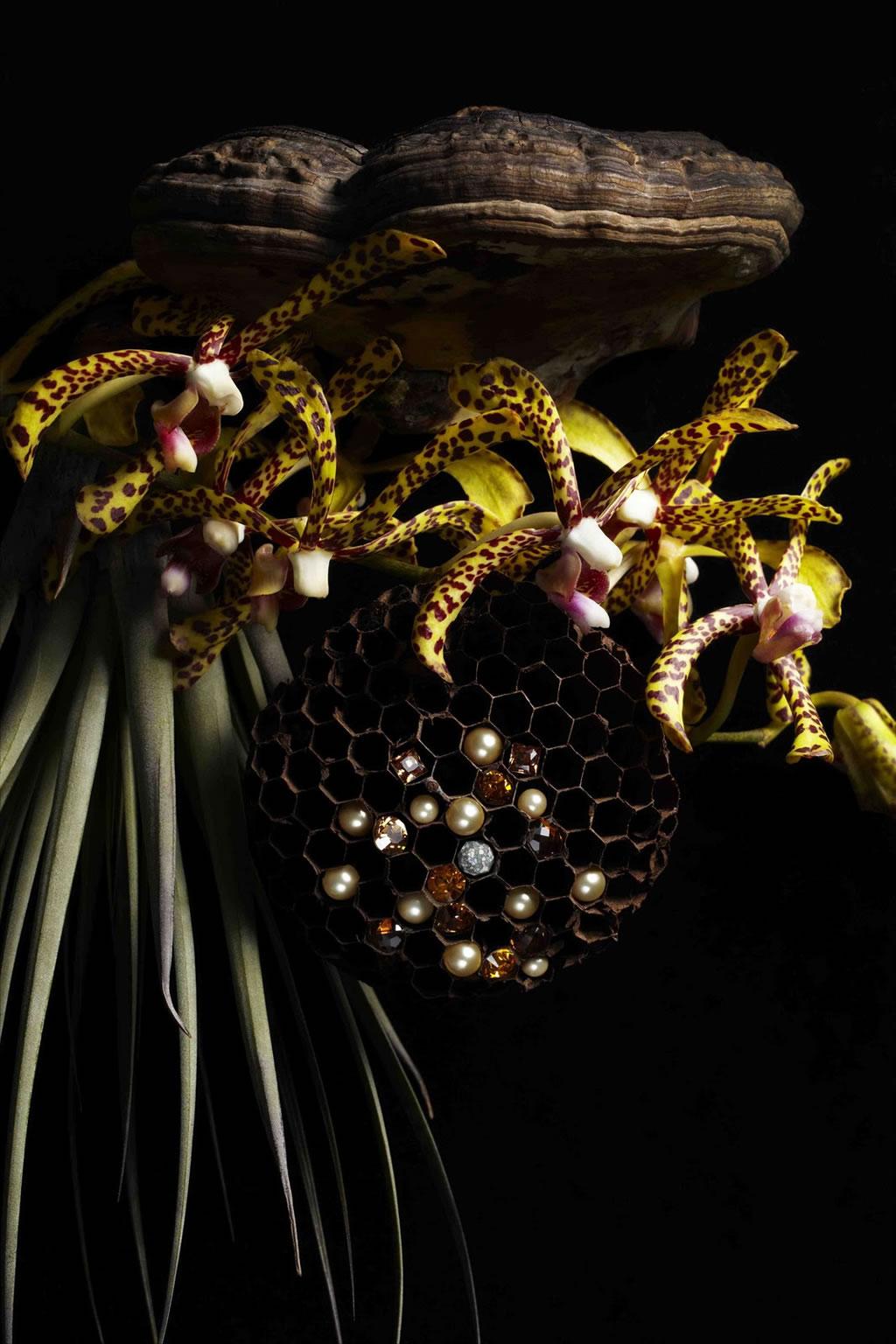 Makoto Azuma`s Botanical Sculpture With Swarovski Elements