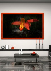Media Decor Allure Moving Art Series with iColor Frames