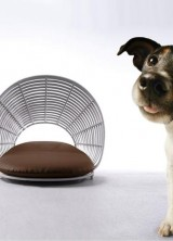 The Operetta Pet Lounge – Luxury Residence For Your Pet