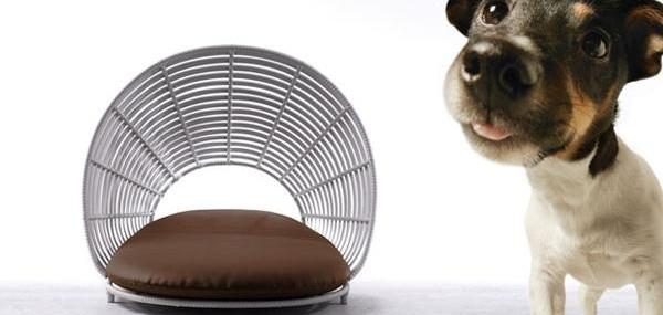 Operetta-Pet-Lounge-1