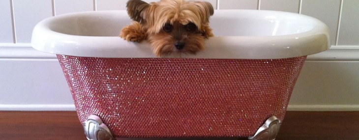 Swarovski-Diamond-Pet-Bathtub