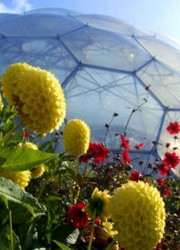 The Largest Greenhouse In The World – Eden Project