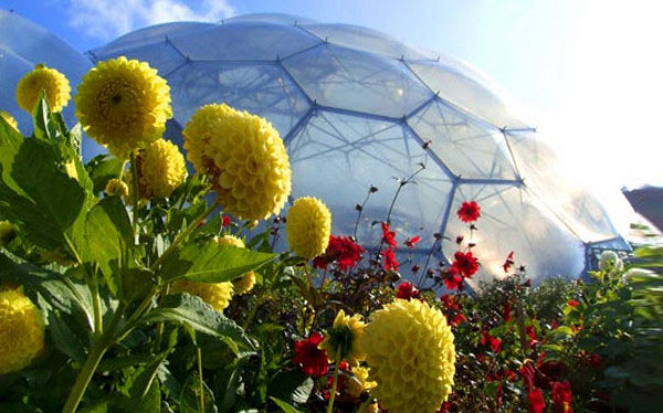 Eden Project - The Largest Greenhouse In The World