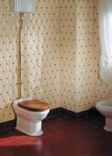 Victorian Spirit Bathroom With Petracer's Tiles