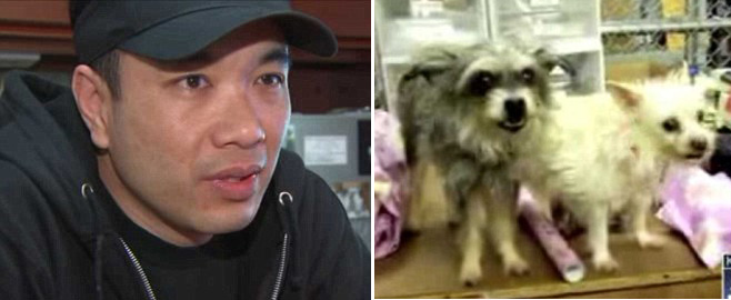 L.A. Businessman Spends $310,000 To Clone Two Pet Dogs