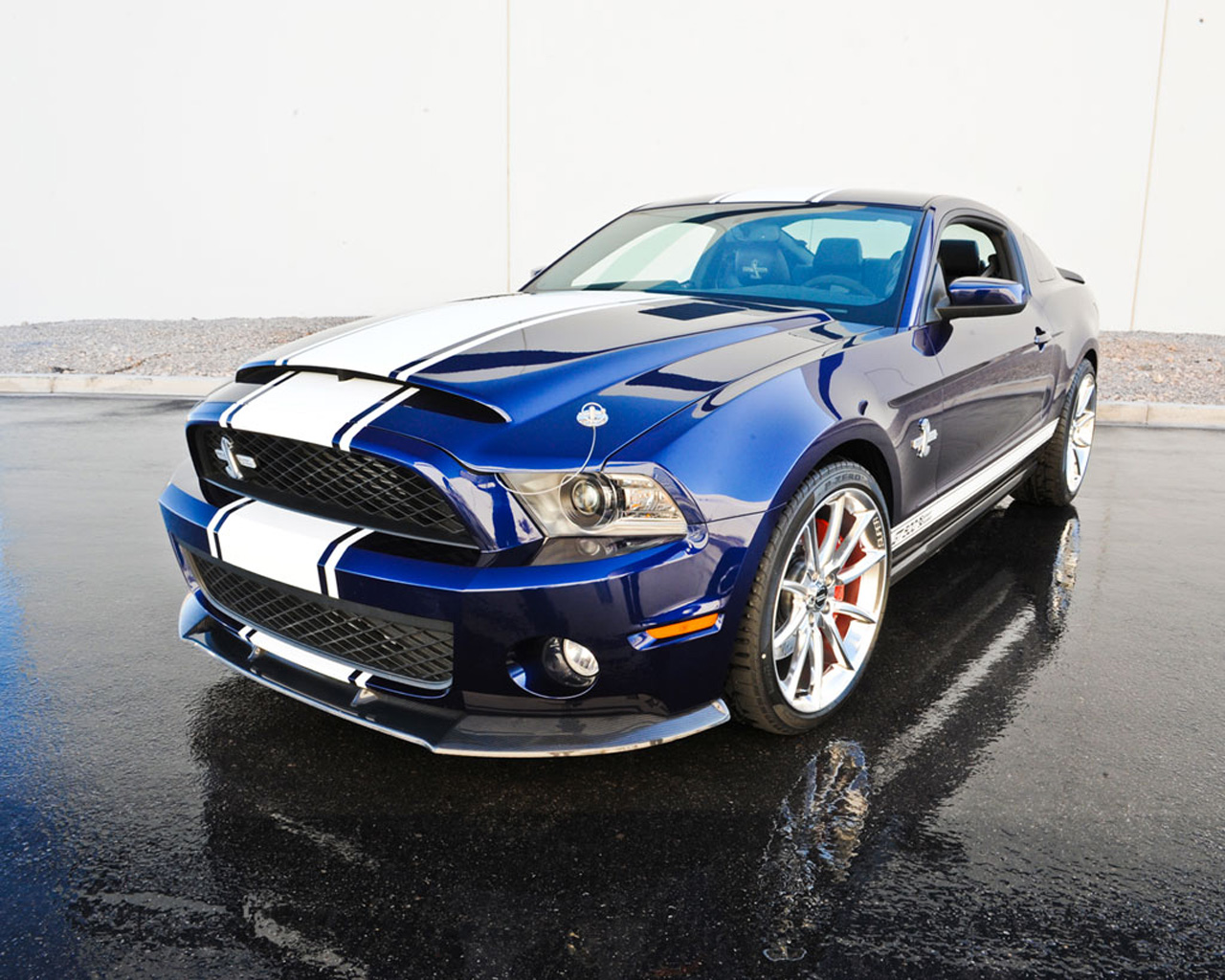 shelby gt500 super snake 800hp mustang on the way extravaganzi. Black Bedroom Furniture Sets. Home Design Ideas