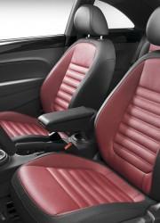 2012 Volkswagen Beetle Made a Simultaneous Debut