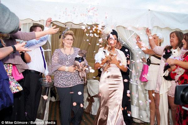 Exravagant £20,000 Dog Wedding