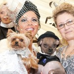 Exravagant £20,000 Dog Wedding