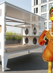 Chicken Co-Op – Luxury House for the Urban Chickens