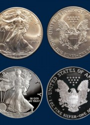 Limited Edition 25th Anniversary American Silver Eagle Set