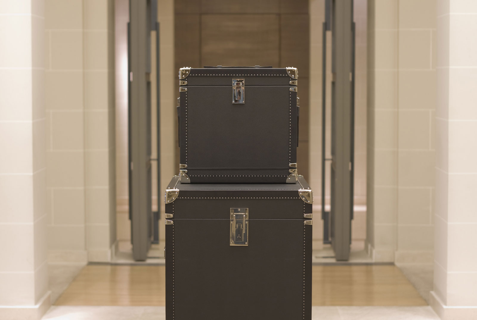 Travel Watch Trunk by T.T. Trunks