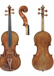Mantuan Violin by Pietro Giovanni Guarneri