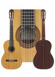 Classical Guitar by Antonio Emilio Pascual Viudes