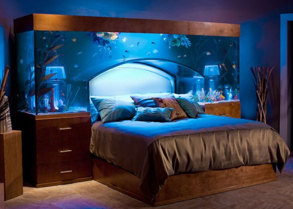 Sleep with the fishes in custom made aquarium bed by for Sleeping with the fishes