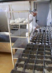 World's Most Expensive Cheese Made in Serbia