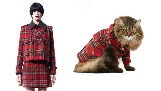 Dress Like Your Cat with United Bamboo&#8217;s Ready-to-wear Cat Couture