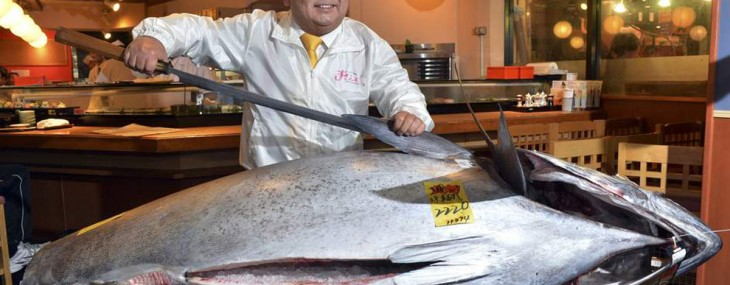 $1.7 Million Bluefin Tuna