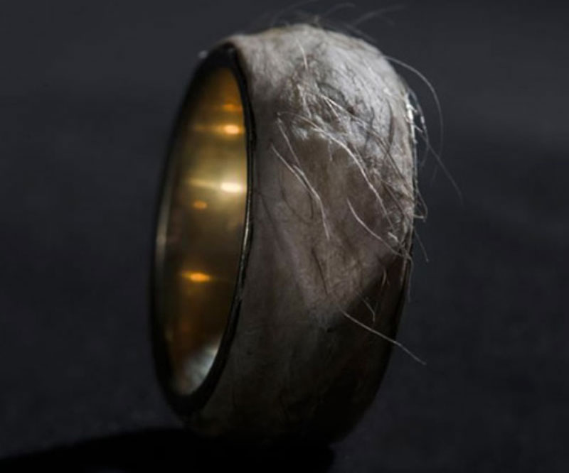 $470,000 Forget Me Knot – Gold Ring with Real Human Skin and Hair