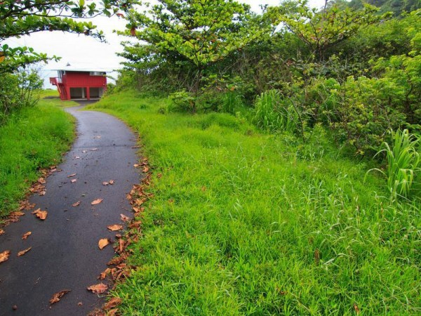 Hawaiian Most Expensive Cottage - Oceanfront Maulua Halei