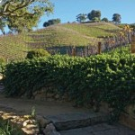 Moraga Vineyards Estate and Winery in Bel Air on Sale for $29.5 Million