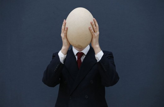 Massive fossilized elephant bird egg up for auction in London