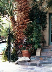 Willows Palm Spring Inn, Quiet And Private Place