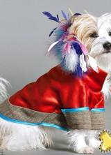 £4,000 Dog Coat by Lilly Shahravesh