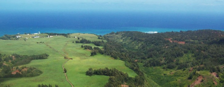 Hawaiian Hidden Gem – Paumalu Ranch
