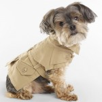 New Pet Accessories for 2013 by Ralph Lauren
