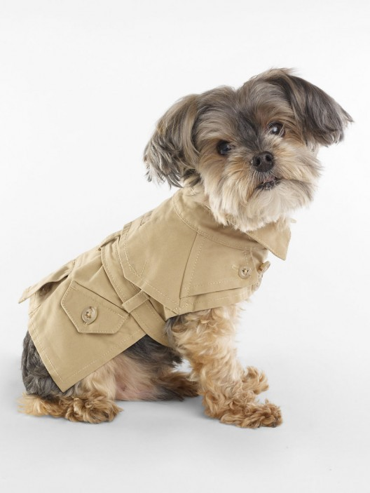 Ralph Lauren's 2013 Pets' Spring Collection
