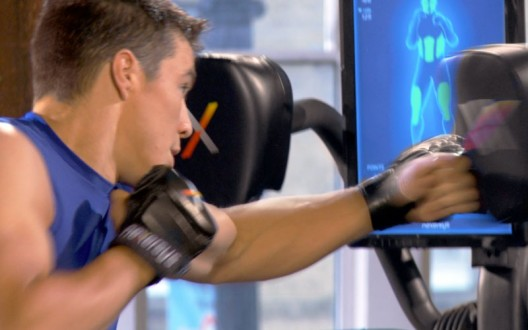 The Nexersys Boxing System