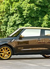 Mini Paceman by Roberto Cavalli for Life Ball 2013