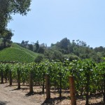 Moraga Vineyard Estate in Bel Air Goes to Rupert Murdoch