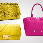 Michael Kors' Neon Bags Collection – Hit of the Season