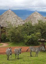 Ngorongoro Crater Lodge in Tanzania – Eighth Wonder of the World?!