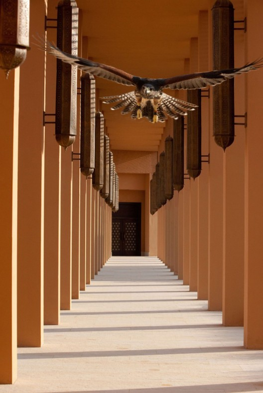 Al Wadi Resort in the United Arab Emirates Surrounded by Dunes