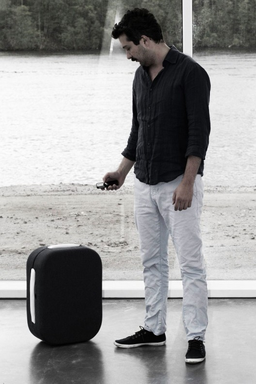 Hop!-suitcase-1