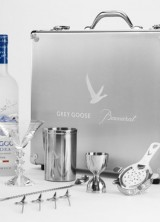 Limited Edition Martini Kit by Grey Goose And Baccarat