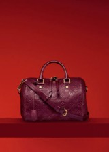 Goose – Star of 2013 Louis Vuitton Holiday Gift Collection