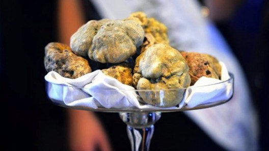 Eleven White Truffles Fetch Three Times The Price Of Gold At Auction