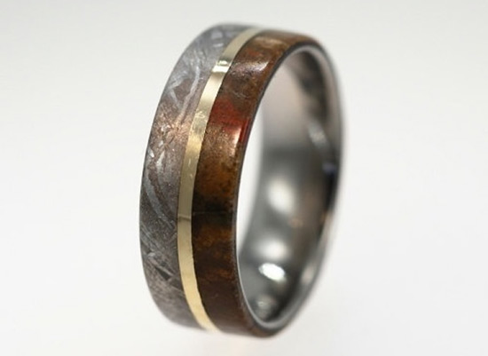 Meteorite Deer Antler and Dinosaur Leg Bone Wedding Rings