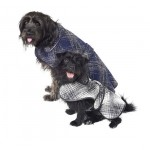 Stylish Pet Winter Coats by Oscar de la Renta