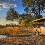 First Luxury Self-drive Safari in Botswana – Adventure of a Lifetime