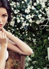 'Dolce' – Dolce & Gabbana's Newest Fragrance